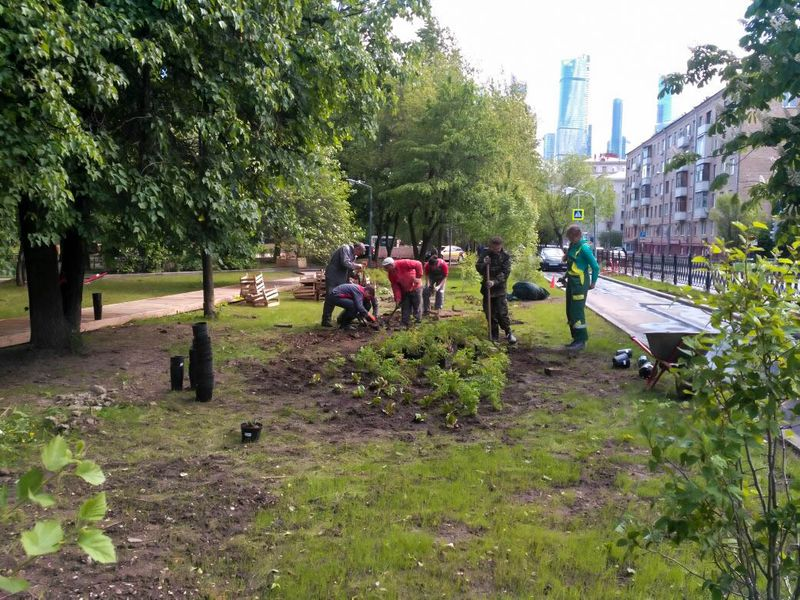 Благоустройство парков и скверов