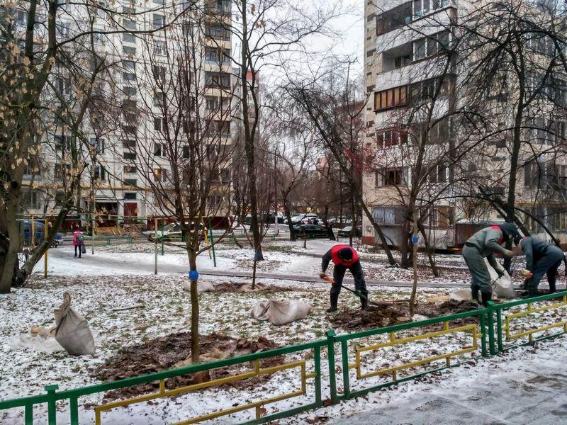 Посади миллион деревьев (2017 г.)