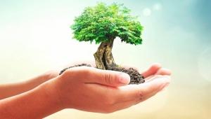 Ваш сад в надежных руках!
