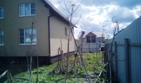 Расчистка участка от деревьев и кустарников